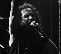 New concert photos updated with Death Angel and Suicidal Angels!